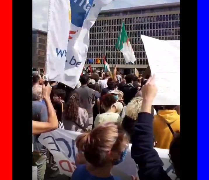 קריאות לשחוט את היהודים, בהפגנה נגד הריבונות בבריסל. צפו: