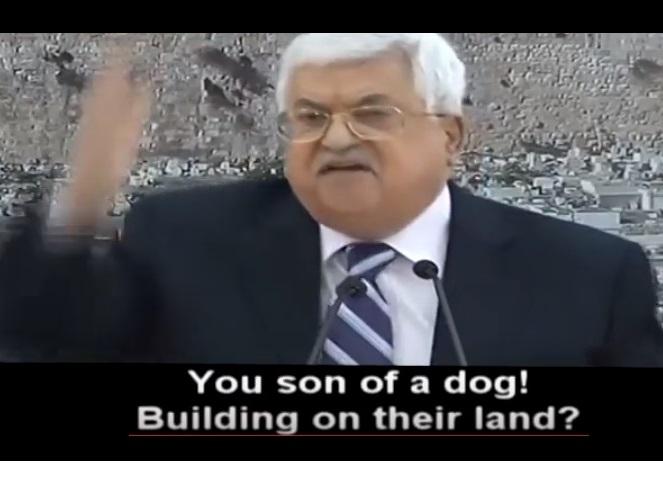 """ב ק ר ו ב של ד""""ר גיא בכור: מה האופציות של מנהיגי הערבים, עם החלת הריבונות?"""
